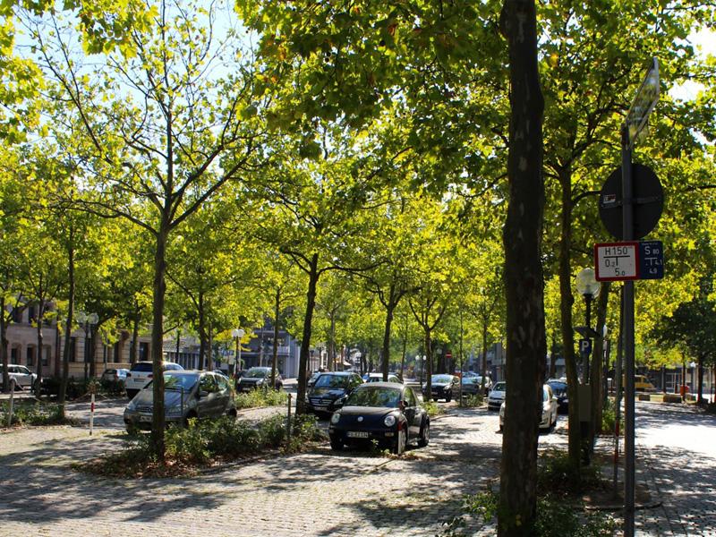 Parkplatz auf der Kleinen Freiheit